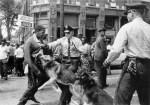 Birmingham_campaign_dogs