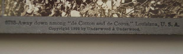 stereoview cotton2